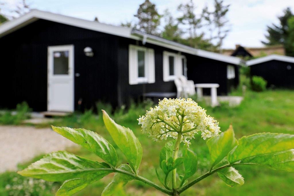 Sommerhus til 6 personer ved Thyholm