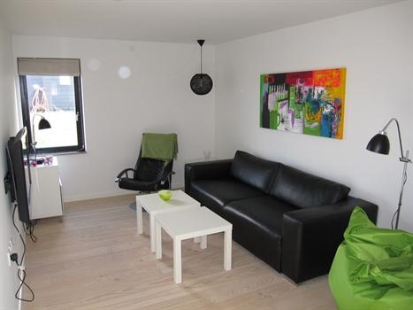 TV-stue med DVD, PS2 og kabel-tv. Stuen kan lukkes af med skydedør.