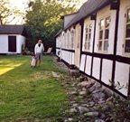 Feriehus til 5 personer ved Samsø