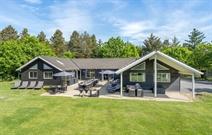 Sommerhus til 20 personer ved Blåvand