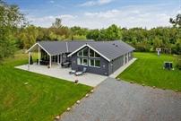 Sommerhus til 18 personer ved Vig Lyng