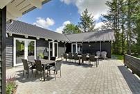 Sommerhus til 24 personer ved Henne Strand