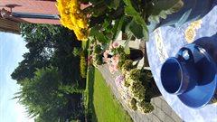 Dejligt sommerhus ved Nødebohuse
